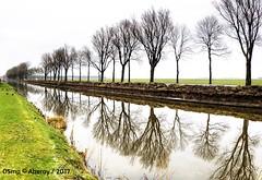 Boterdiep,Groningen,the Netherlands,Europe (Aheroy) Tags: boterdiep groningen aheroy aheroyal bomen trees weg road groningerlandschap landscape landschap canal kanaal butterdaip n994 groningerweg reflections