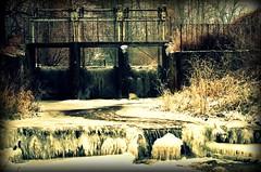 Pisia Tuczna w Jaktorowie (stempel*) Tags: gambezia pentax k30 polska poland polen polonia 50mm jaktorów pisia tuczna rzeka jaz zima winter