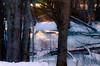 Winter Nature (Kat Hatt) Tags: winter trees light sunlight ice deadtrees stream weeds snow