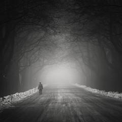 Destination Unknown (Vesa Pihanurmi) Tags: trees branches road ice snow winter fog mist man figure dark helsinki malmi monochrome
