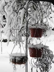 Snowpocalypse 2017_17