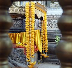 "PB140690-a (photozaki) Tags: india ""sujata kuti"" ""mahabohi temple"" ""mahabodhi mahavihara temple ""buddhist buddha buddhism ""bodhi tree"" bodhgaya gaya buddhist monk monks ashoka enlightenment ""vajrasan diamond throne"""