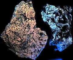 Limestone fluorescing (Madison Limestone, Mississippian; Uintah County, Utah, USA) 2 (James St. John) Tags: limestone biogenic sedimentary rock calcite madison missippian uintah county utah fluoresce fluoresces fluorescing fluorescent fluorescence