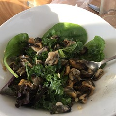 Bruny Island mussels for my special dinner. Cooked by M! 😍
