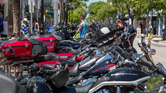 20150919 5DIII Key West Poker Run 193 (James Scott S) Tags: street canon scott keys james islands us ride unitedstates phil florida candid rally s run harley event poker moto motorcycle biker hd annual keywest davidson rider duval 43rd 43 petersons lrcc 5diii