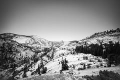 Olmstead Point, Yosemite. (Matt Benton) Tags: blackandwhite digital yosemite olmsteadpoint sonyalpha7 zeiss35mmf2biogonzm trip2015