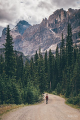 Way to Lake O'hara