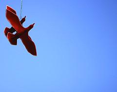 Insieme (BerrutiGiulia) Tags: sky art arte uccelli piemonte cielo cuneo rosso azzurro colori insieme piedmont langhe installazione bergolo