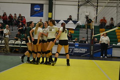 DSC_0299 (BrockportAthletics) Tags: new york college golden university state tournament playoffs volleyball ncaa potsdam eagles framingham clarkson the regionals brockport 2015 sunyac