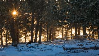 Sunburst and Snow | HFF