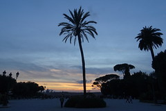 Rome, sunset at Villa Borghese (Poutik) Tags: sunset sky roma view terrace churches palmtrees esplanade pinetrees panoram