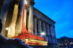 Poppies (Tony Shertila) Tags: city blue england building weather architecture night clouds liverpool geotagged evening europe cloudy unitedkingdom britain outdoor dusk structure falling poppies rememberance tribute weeping limestreet merseyside stgeorgeshall gbr remeberance centralward windoweuropebritainenglandmerseysideliverpoolcityweathernightcloudscloudyblueduskeveningst hallstructurebuildingarchitecturepoppiestributefallingweepingwindow geo:lat=5340893708 geo:lon=297964990