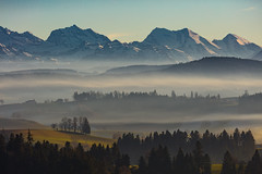 late afternoon in december (Role Bigler) Tags: abendlicht alpen alps baum berge bäume canoneos5dsr ef4070200isusml emmental eveninglight herbst landschaft mist natur nature nebel schweiz suisse switzerland tree autumn clearsky fall fog foggy forest highmountains landscape manfrotto mountains myst snowmountains trees tripod wald