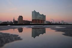 Elbphilharmonie Hamburg (Elbmaedchen) Tags: elbphilharmonie spiegelung wasserspiegelung silhouette hamburgerhafen elbe reflektionen reflection explore389