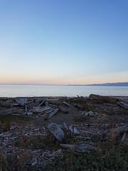 beach time (gale.savannah93) Tags: esquimalt colwood esquimaltlagoon sunset driftwood yyj explorebc bc britishcolumbia victoria canada