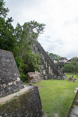 20161120-1127 Belize_DSC5446.jpg (koloding) Tags: ancient belize tikal mayan centralamerica pyramids culture decay mayanruins tropical indian