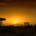 African sunrise, Ndutu, Tanzania, East Africa thumbnail