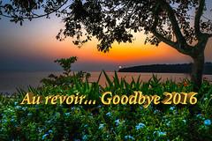 Goodbye 2016 (mehtasunil) Tags: post process goodbye goodbye2016 endofyear aurevoir sky sea sunset water beach travel blue sun goa leicalens leicaq leicaimages leicacamera leicaforum leicaindia grandhyattgoa