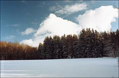 Winterspaziergang am Katzenbuckel (1) (Thaddl) Tags: germany nikonf100 nikonafnikkor3570mm13345 3570mmf3345af kodakcolorplus200 reflectaproscan7200 silverfast6aistudio silverfast6hdrstudio heliopandigitalpolcircular polfilter polarisationsfilter polarizer katzenbuckel odenwald waldbrunn waldkatzenbach neckarodenwald rheinneckar badenwürttemberg bäume trees schnee snow winter himmel sky film analog analogue wolken clouds