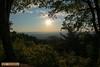 LRa05-24-16m-2888 (Glotzsee) Tags: nature virginia blueridgeparkway blueridgemountains blueridge outdoors mountains trees glotzsee