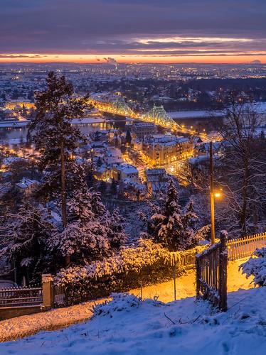 Dresden im Frost