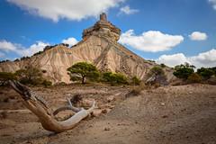 Peñaflor (Manuel Fdez) Tags: 2016 arquitectura bardenas castillo d3200 edificios erosion españa europa navarra nikon peñaflor valtierra