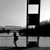 Hameln, Germany - Bridge over the Weser (pom.angers) Tags: panasonicdmctz30 december 2016 hameln hamelin weser riverweser lowersaxony germany europeanunion