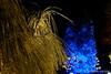 Looking Blue (Sockenhummel) Tags: botanischergarten botanischergartenberlin christmasgarden christmasgardenberlin park christmas weihnachen zauberwald magicforest bäume trees bunt beleuchtung forest wald nadelbäume botanicalgarden berlin