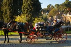 Rome 2010 1033