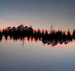 Mirror worlds (Andreas Øverland) Tags: akershus norway no