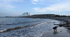 Torness day out. (Pops McKendry) Tags: torness tornesspowerstation tornessnuclearpowerstation poppymckendry popsmckendry