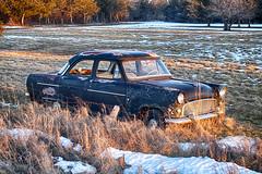 Baby You Can Drive My Car (gabi-h) Tags: ford consul car field fence grass snow gabih vintage princeedwardcounty abandoned vehicle black sedan memories 60s thinkingofthebeatles oldiebutgoodie