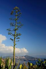 Lipari, il panorama da Quattrocchi. (Giancarlo Pompei) Tags: lipari eolie isoleeolie