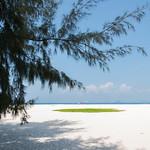 Bamboo Island thumbnail