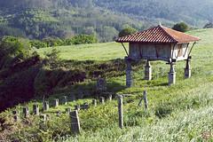 Hórreo (Pakinho10) Tags: españa asturias airelibre outdoor cadavedo hórreo panera granero nature naturaleza spain hierba yerba ground asturies