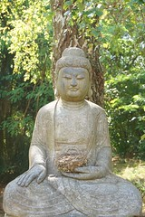 Zen Sesshin Weiterswiller 2015 (Marco Braun) Tags: summer france nid temple frankreich nest buddha sommer bouddha retreat alsace zen chan meditation t buda elsass siddhartha tempel shakyamuni zazen sesshin weiterswiller  2015 boeddha  ango boudhism gautama    f    ryomonji