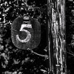 The Number 5 (mns_mike) Tags: bw sign five pole number
