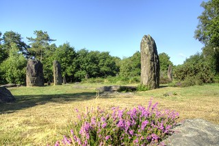 Megaliths of Monteneuf