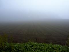 Early morning fog, At Northern Japan (Zunten) Tags: summer brown white green field japan fog hokkaido farm hill soil   gr  biei  ricoh      darkbrown hokkaid     kamikawadistrict