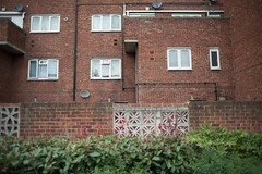 (ziemowit.maj) Tags: uk windows london wall estate pipes hedge southlondon penge urbanfragment brickarchitecture ef28mmf18 canon5dmkiii sattellitedish britishhousingarchitecture