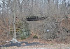 Railroad Bridge (rchrdcnnnghm) Tags: bridge abandoned railraod franklinnj passaiccountynj newyorksusquehannaandwesternrailroad
