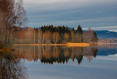 Late Autumn Landscape (bjorbrei) Tags: autumn trees lake fall water oslo norway forest reflections tranquility calm tranquil calmness maridalen maridalsvannet