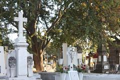 IMG_5203 (Alexa No) Tags: cemetery graveyard mexico cementerio panteón cruz cross rosas roses