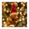 Merry Xmas to everyone - Happy Macro Monday (explored) (Ruud.) Tags: ruudschreuder nikon nikond810 d810 105mm 105mmf28 macromondays mm hmm macro makro closeup holidaybokeh christmas xmas kerst kerstfeest versiering decoration bokeh