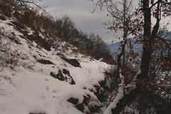 Branson (bulbocode909) Tags: valais suisse branson fully nature montagnes arbres sentiers nuages neige hiver