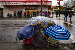 Waiting For The Parade (Harry2010) Tags: parade chinesenewyear yearoftherooster 2017 rain vancouver umbrella wet pavement
