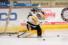 """Nailers_Walleye_1-6-17-8 • <a style=""""font-size:0.8em;"""" href=""""http://www.flickr.com/photos/134016632@N02/32042433821/"""" target=""""_blank"""">View on Flickr</a>"""