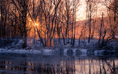 Freitag :-) (Florian Grundstein) Tags: naab oberpfalz bayern heimat outdoor hike wanderlust sonnenaufgang sunrise morning iced cold frost winter mist sun sunbeam sunray river riverside nature early
