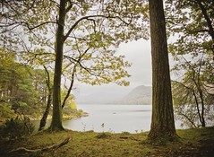 imagine (CNorthExplores) Tags: derwentwater lakedistrict england uk lake trees peaceful outdoor calm mountain grass water nature cumbria explored