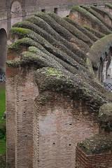 Rome 2010 1540